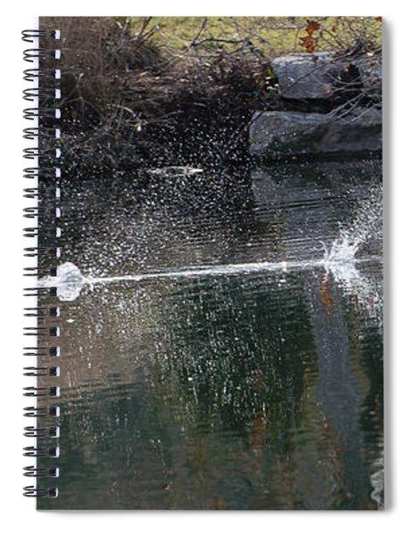 Cormorant Take-off Spiral Notebook