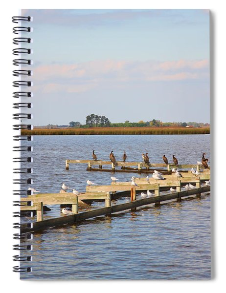 Cormorants And Seagulls On Old Dock Near Blackwater  National Wildlife Refuge Near Cambridge Md Spiral Notebook