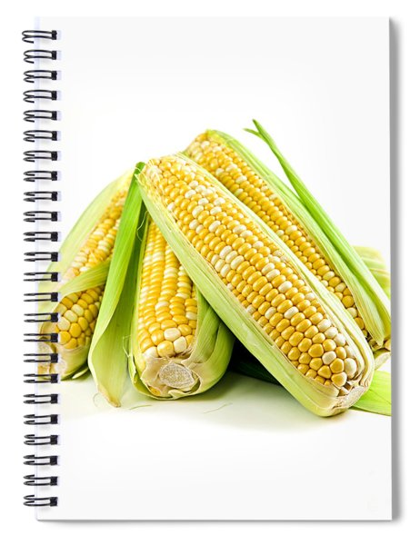Corn Ears On White Background Spiral Notebook