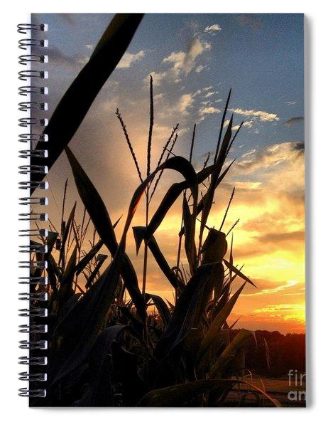 Cornfield Sundown Spiral Notebook
