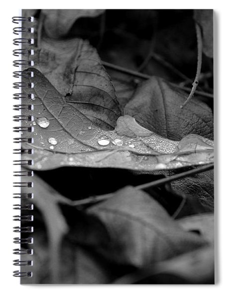 Cradle Spiral Notebook