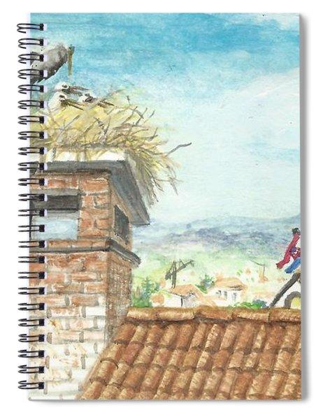 Cranes In Croatia Spiral Notebook
