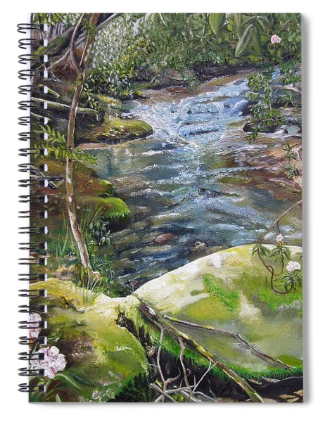 Spiral Notebook featuring the painting Creek -  Beyond The Rock - Mountaintown Creek  by Jan Dappen