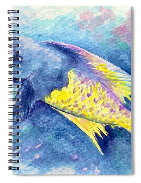 Creole Wrasse Spiral Notebook