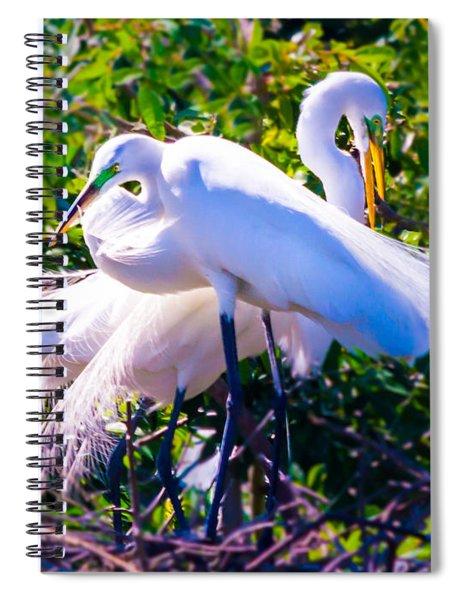 Criss-cross Egrets Spiral Notebook