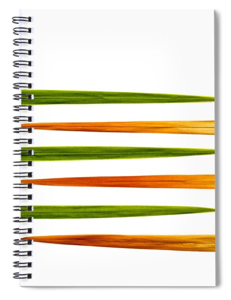 Crocosmia Leaves On White Background Spiral Notebook