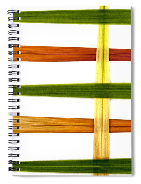 Crocosmia Leaves On White Spiral Notebook