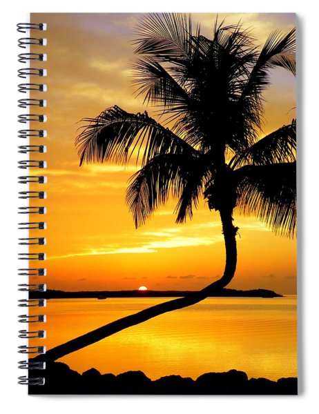 Crooked Palm Spiral Notebook
