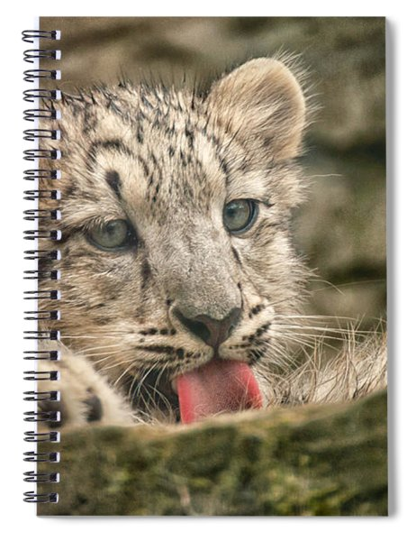 Cub And Tongue Spiral Notebook