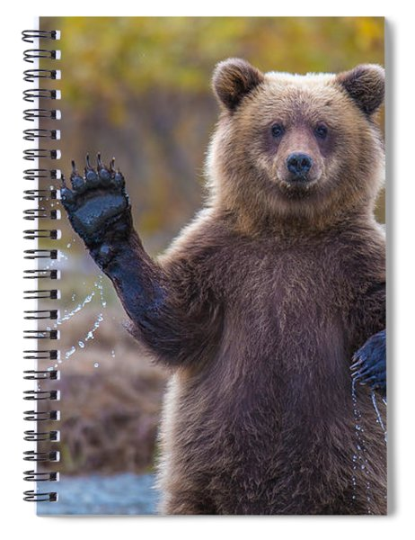 Cub Scouts Honor  Spiral Notebook
