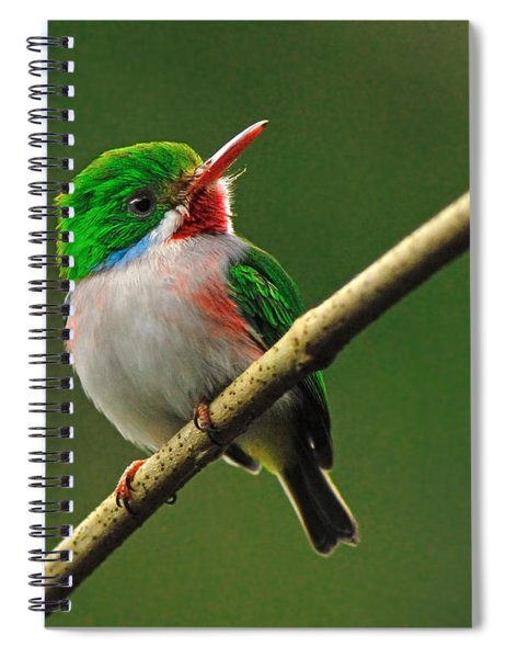 Cuban Tody Spiral Notebook