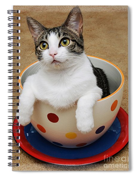 Cup O Tilly 1 Spiral Notebook