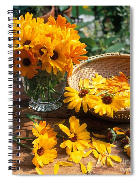 Cut Flowers With Basket And Vase Spiral Notebook