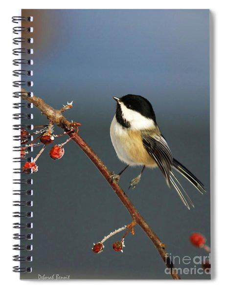 Cutest Of Cute Spiral Notebook
