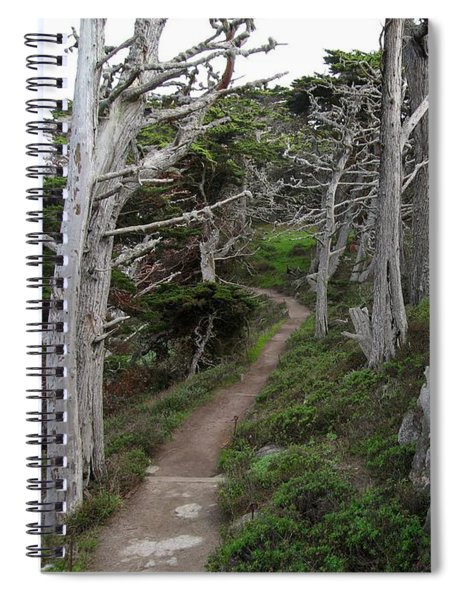 Cypress Grove Trail Spiral Notebook