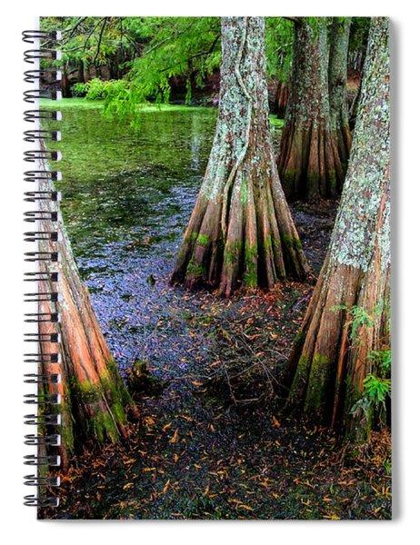 Cypress Waltz Spiral Notebook