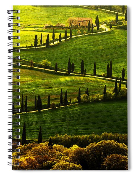 Cypresses Alley Spiral Notebook