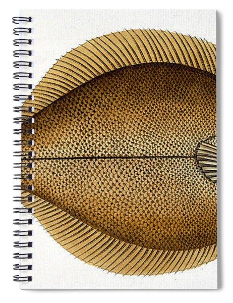 Dab Spiral Notebook