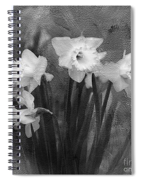 Daffodils In Black And White Spiral Notebook