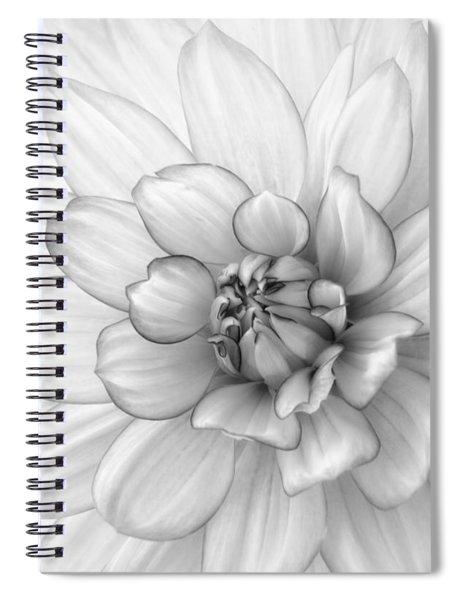 Dahlia Flower Black And White Spiral Notebook