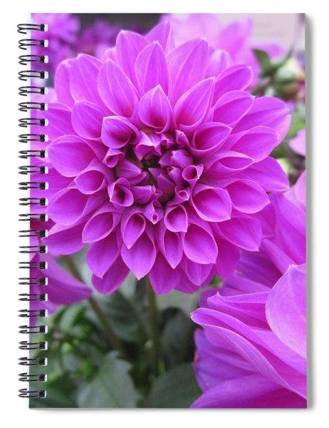 Dahlia In Pink Spiral Notebook