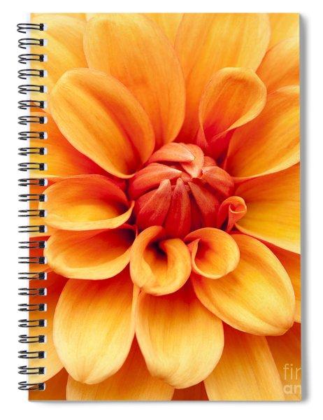 Dahlia Squared Spiral Notebook