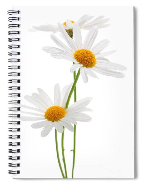 Daisies On White Background Spiral Notebook