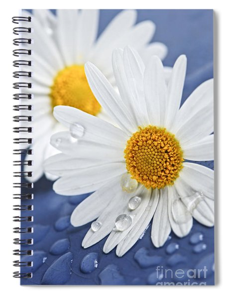 Daisy Flowers With Water Drops Spiral Notebook
