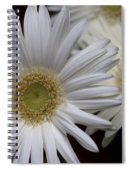 Daisy Photo Spiral Notebook