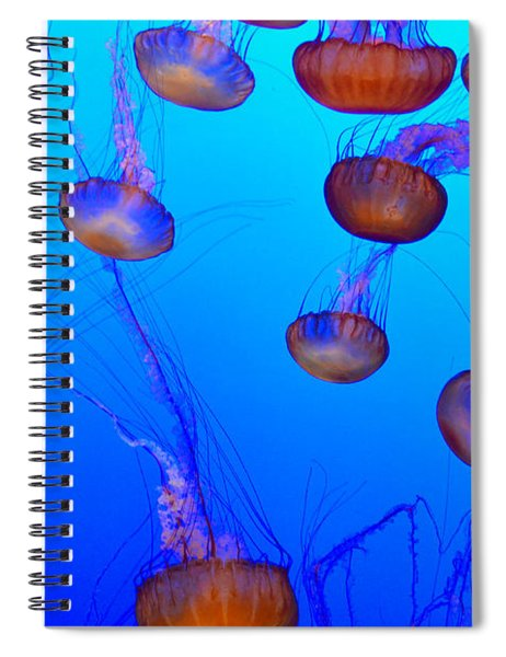Dance Of The Jellyfish Spiral Notebook