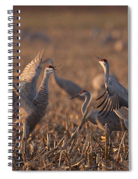 Dancing Sandhills Spiral Notebook