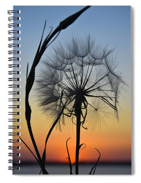Spiral Notebook featuring the photograph Dandy Lion by Skip Hunt