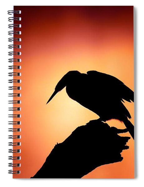 Darter Silhouette With Misty Sunrise Spiral Notebook