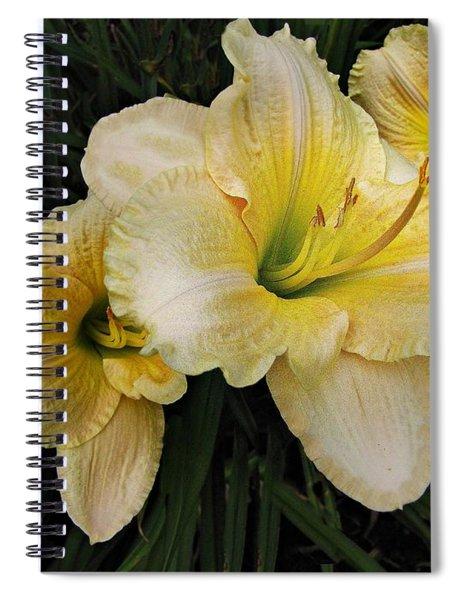 Day Lilies A Short Life Spiral Notebook