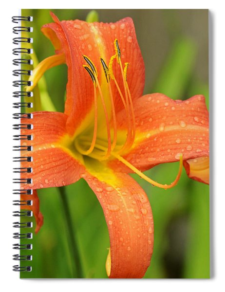 Day Lilly Spiral Notebook