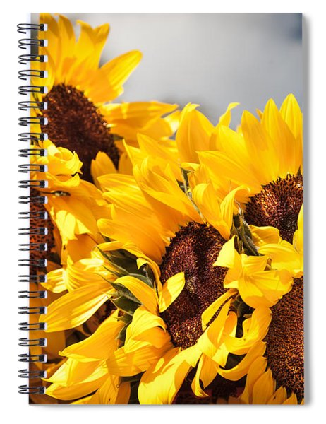 Daydreaming Gals Spiral Notebook