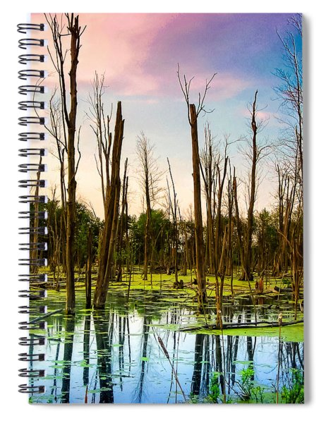 Daylight In The Swamp Spiral Notebook
