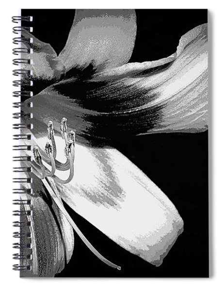 Daylily In Gray Spiral Notebook