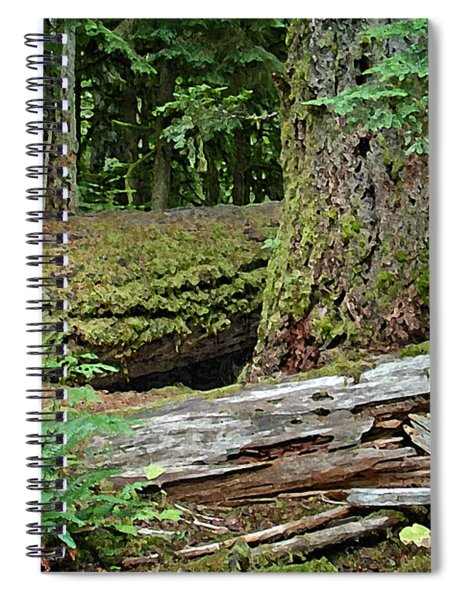 Deep In The Forest Spiral Notebook