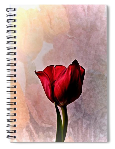 Deep Red Tulip On Pale Tulip Background Spiral Notebook