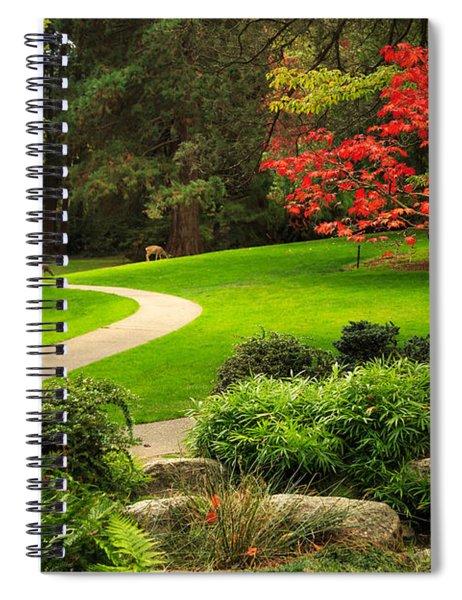 Deer In Lithia Park Spiral Notebook