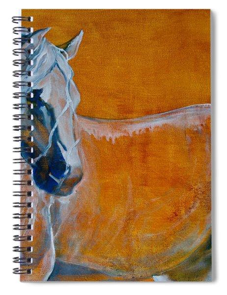 Del Sol Spiral Notebook