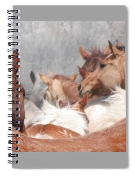 Delicate Illusion Spiral Notebook