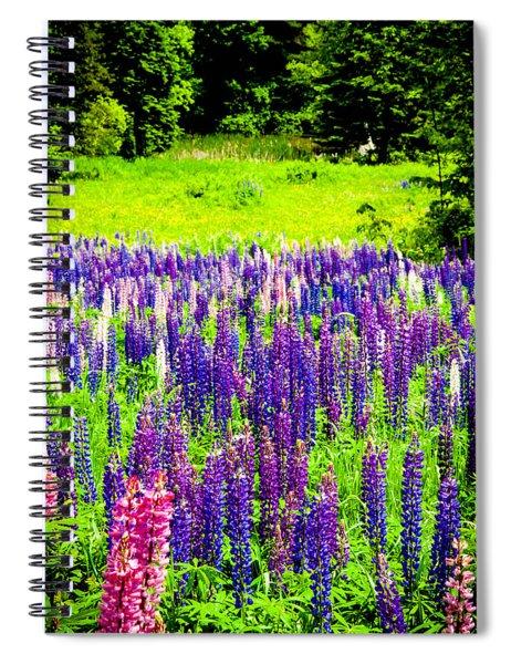 Depth Of Color Spiral Notebook