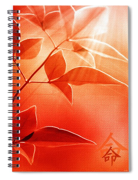 Destiny Spiral Notebook