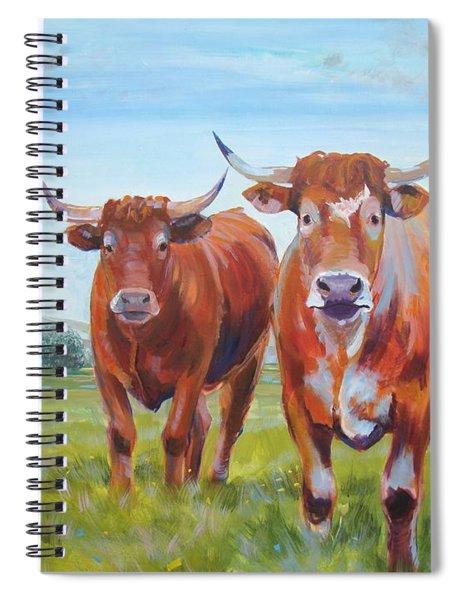 Devon Cattle Spiral Notebook
