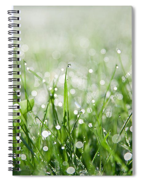 Dew Drenched Morning Spiral Notebook