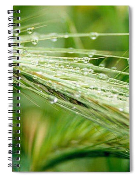 Dew Drops On Barley, San Francisco Spiral Notebook