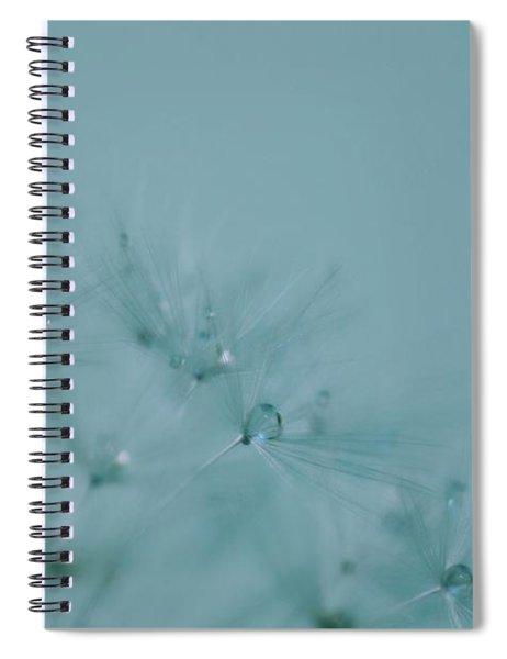 Dew Drops On Dandelion Seeds Spiral Notebook