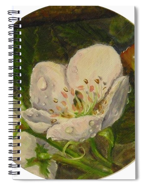 Dew Of Pear's Blooms Spiral Notebook